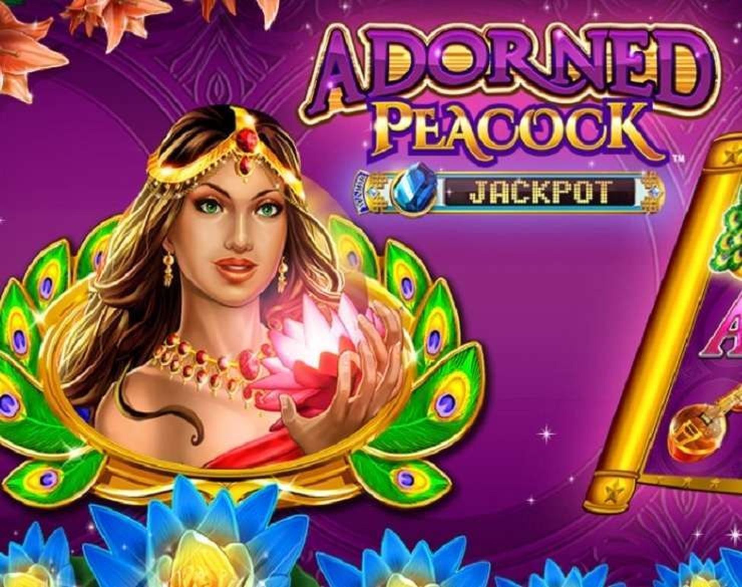 Se Adorned Peacock Online Slot Demo Game, Konami Gaming