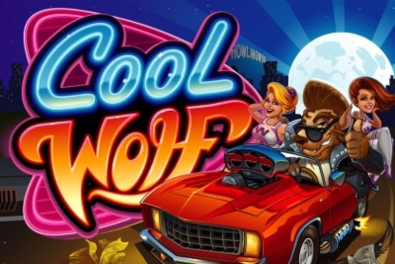Se Cool Wolf Online Slot Demo Game, Microgaming