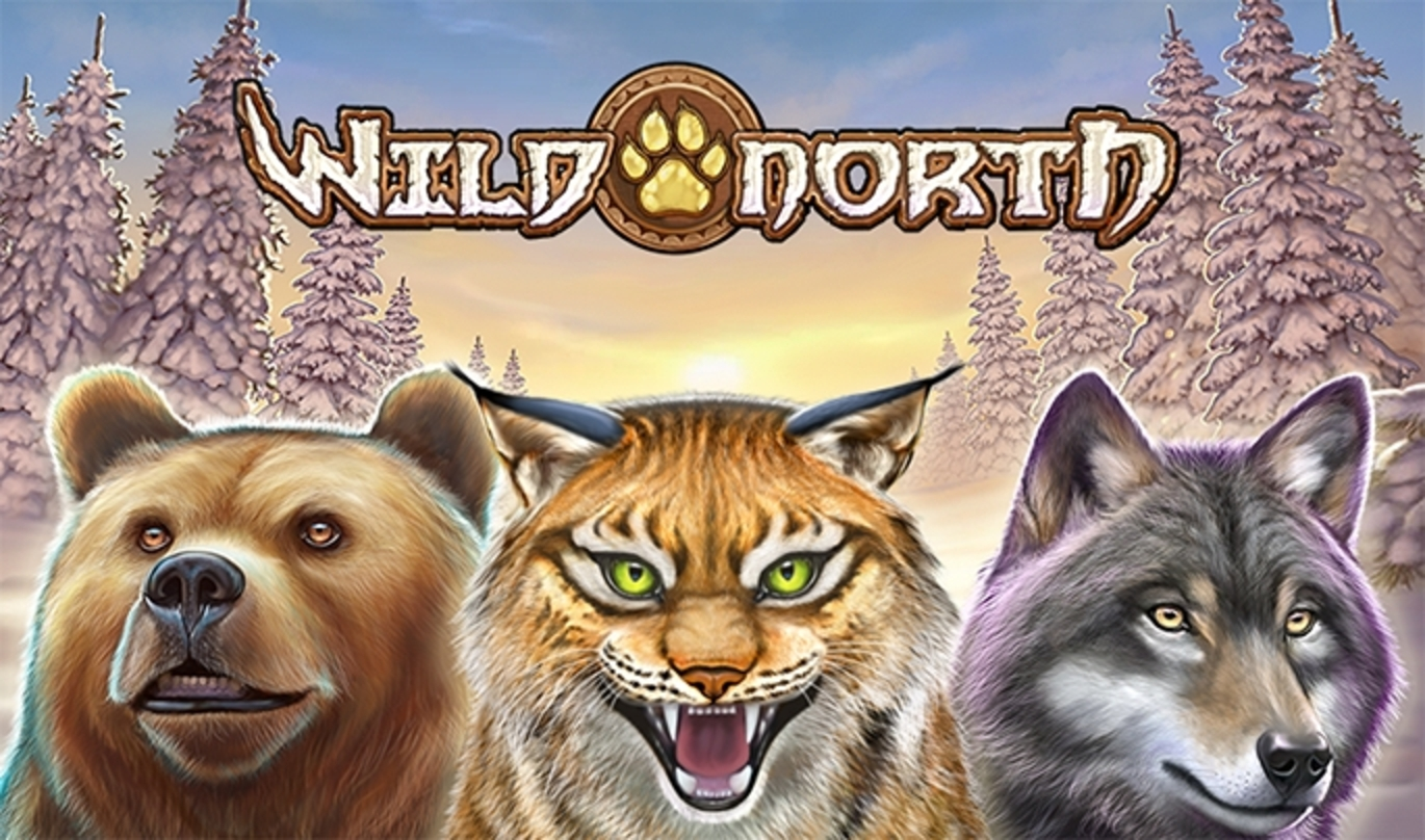 Se Wild North Online Slot Demo Game, Playn GO