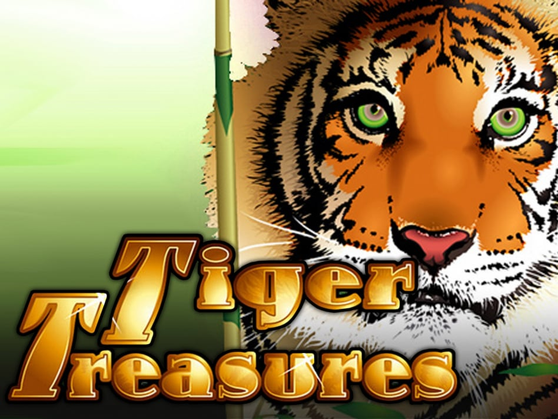 Se Tiger Treasures Online Slot Demo Game, Real Time Gaming