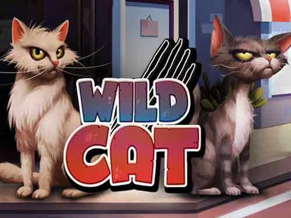 Se Wild Cat Online Slot Demo Game, Spinmatic